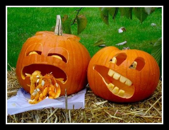 pumpkins-funny