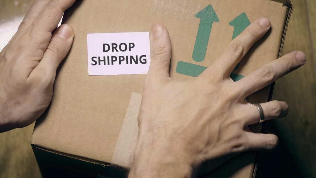 Dropshipping to make some extra cash